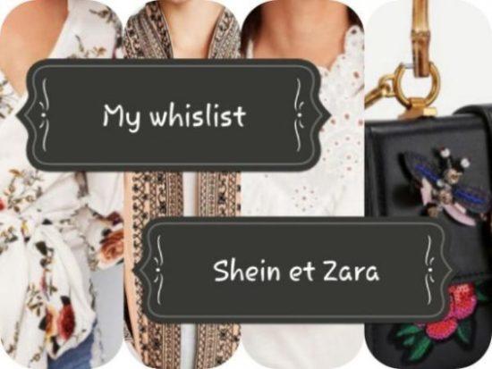 Whislist de l'automne : Shein et Zara