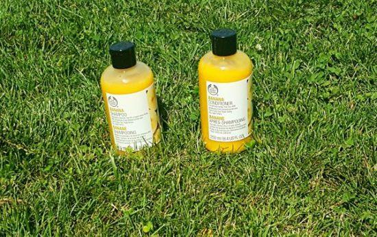 Cheveux shampoing et après shampoing pour cheveux secs avis the body shop
